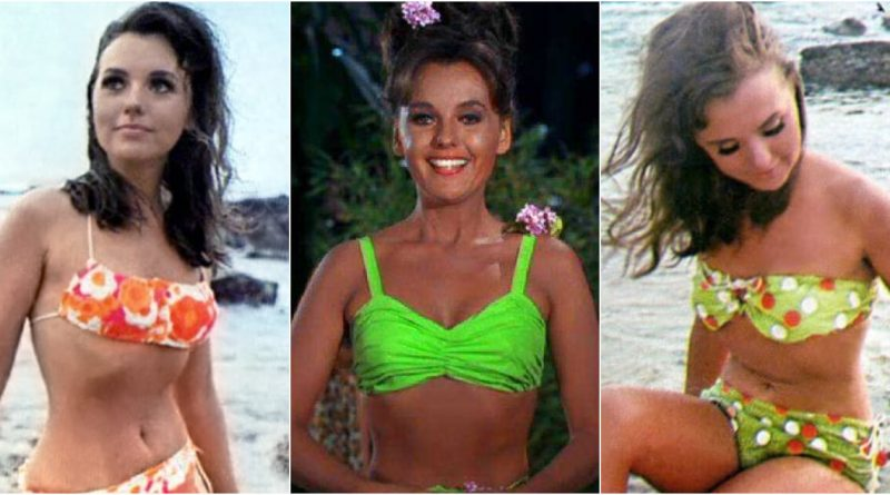 Dawn Wells Bikini Body Height Weight Nationality Net Worth